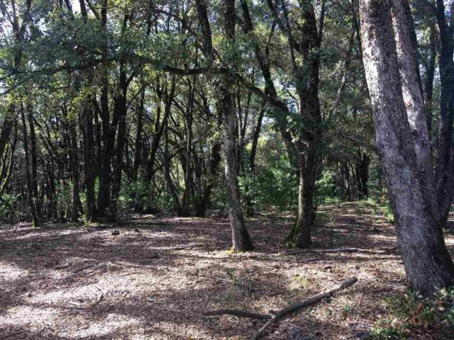 0-Lot 12 Mineral Ridge Court, Pine Grove, CA 95665 (MLS #19005008) :: Dominic Brandon and Team