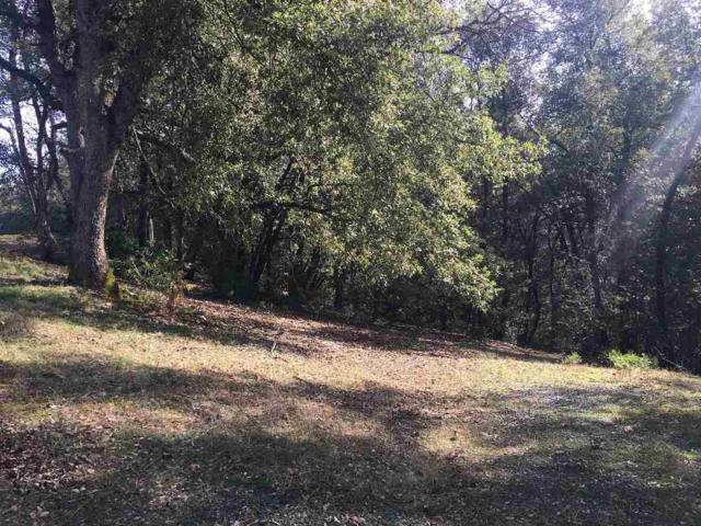 0-Lot 15 Mineral Ridge Road, Pine Grove, CA 95665 (MLS #19005018) :: Dominic Brandon and Team