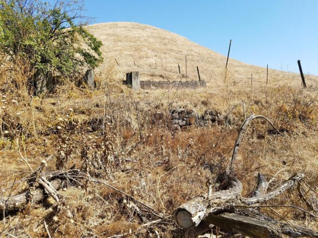 8916 N Shelton Road, Linden, CA 95236 (MLS #19005034) :: Keller Williams - Rachel Adams Group