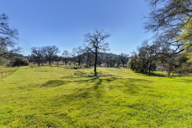 10224 Carriage Road, Grass Valley, CA 95949 (MLS #19005054) :: REMAX Executive