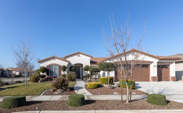 2437 Ashbridge Lane, Manteca, CA 95336 (MLS #19005257) :: REMAX Executive