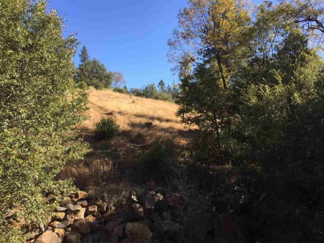 0-Lot 38 Petersen Ranch Drive, Pine Grove, CA 95665 (MLS #19005426) :: Dominic Brandon and Team