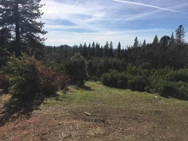 0-Lot 40 Petersen Ranch Drive, Pine Grove, CA 95665 (MLS #19005432) :: Dominic Brandon and Team