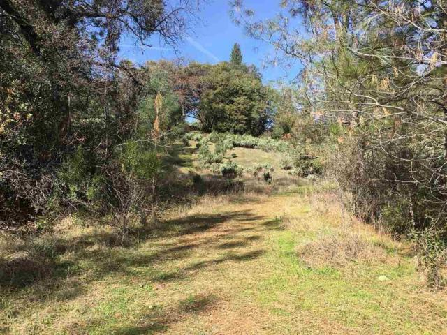 0-Lot 41 Petersen Ranch Drive, Pine Grove, CA 95665 (MLS #19005443) :: Dominic Brandon and Team