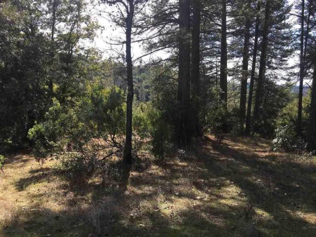 0-Lot 21 Petersen Ranch Drive, Pine Grove, CA 95665 (MLS #19005629) :: Dominic Brandon and Team