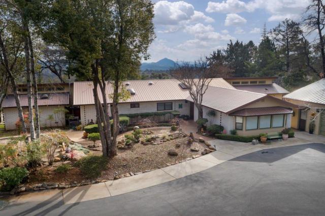11890 Nugget Lane, Sutter Creek, CA 95685 (MLS #19005633) :: The Merlino Home Team