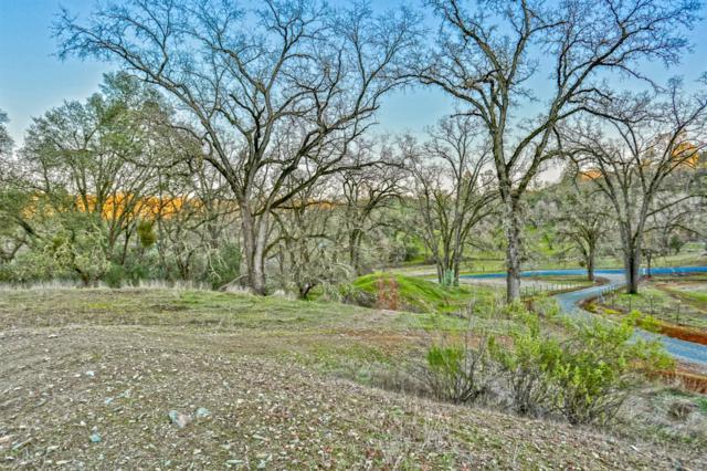 4165 Black Oak Drive, Shingle Springs, CA 95682 (MLS #19005751) :: Dominic Brandon and Team