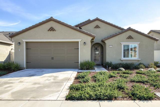 1664 Arbor Brook Drive, Manteca, CA 95336 (MLS #19006124) :: The MacDonald Group at PMZ Real Estate