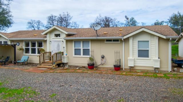 3182 Chicharra Way, Coulterville, CA 95311 (MLS #19006302) :: REMAX Executive