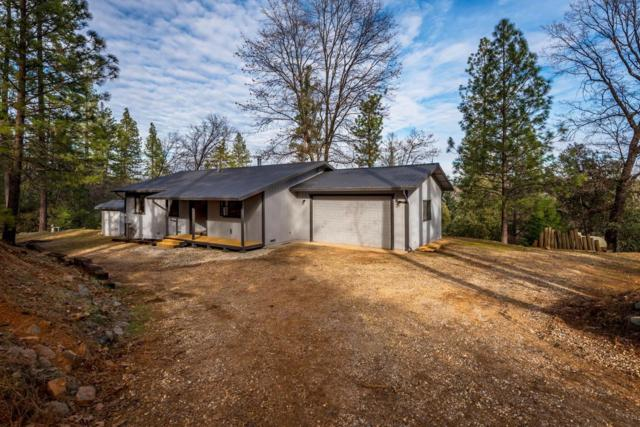20037 Tanglewood Road, Grass Valley, CA 95945 (MLS #19006470) :: REMAX Executive
