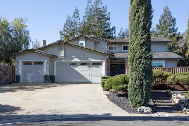 900 Mount Casey Court, El Dorado Hills, CA 95762 (MLS #19006501) :: Keller Williams Realty - Joanie Cowan