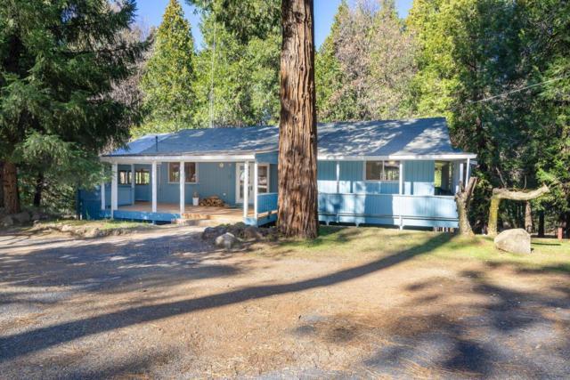 23709 Shake Ridge Rd, Volcano, CA 95689 (MLS #19006646) :: Heidi Phong Real Estate Team