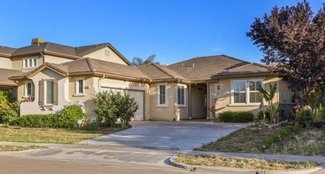 1432 Mendocino Creek Drive, Patterson, CA 95363 (MLS #19006732) :: The Merlino Home Team