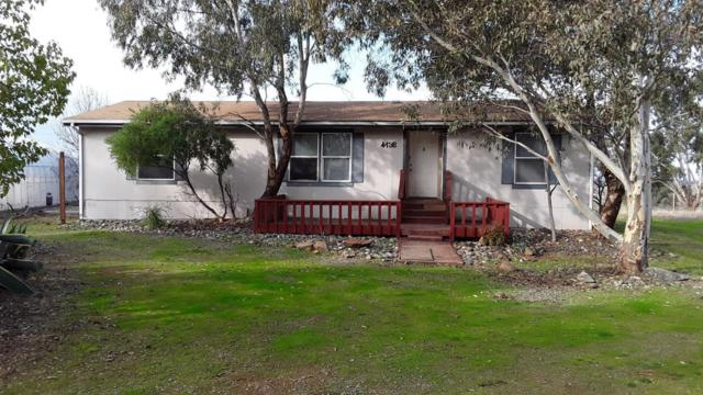 4136 Kapaka Lane, Wheatland, CA 95692 (MLS #19006737) :: Dominic Brandon and Team