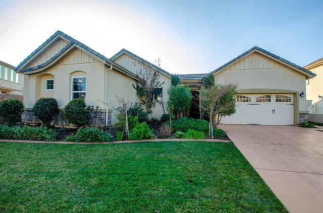 10046 Winkle Circle, Elk Grove, CA 95757 (MLS #19006915) :: Dominic Brandon and Team