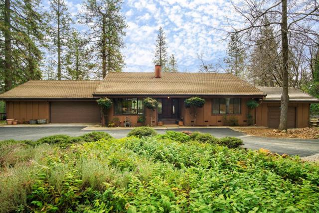 10939 Pear Orchard Way, Nevada City, CA 95959 (MLS #19007086) :: Keller Williams - Rachel Adams Group
