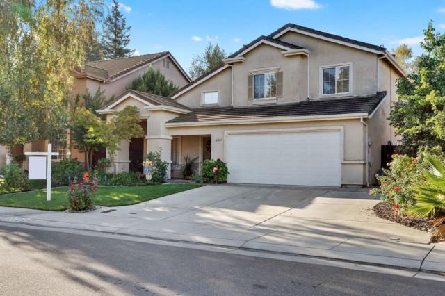 10195 River Park Circle, Stockton, CA 95209 (MLS #19007141) :: Keller Williams - Rachel Adams Group
