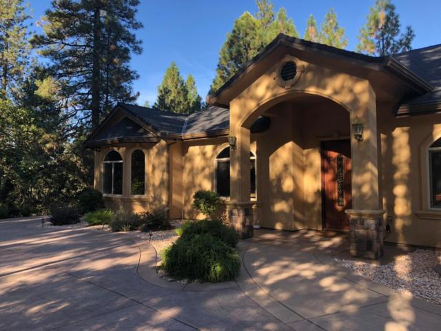 22031 Shoer Court, Foresthill, CA 95631 (MLS #19007153) :: The Del Real Group