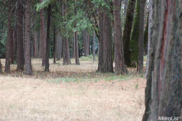 0 2 Acres On Foresthill Road Road, Foresthill, CA 95631 (MLS #19007190) :: Dominic Brandon and Team