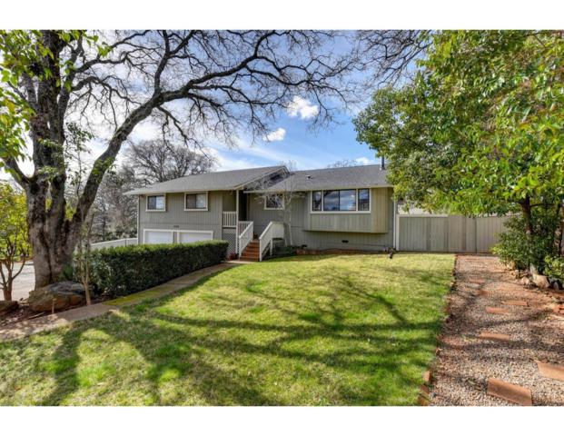 12389 New Airport Road, Auburn, CA 95603 (MLS #19007193) :: The Merlino Home Team