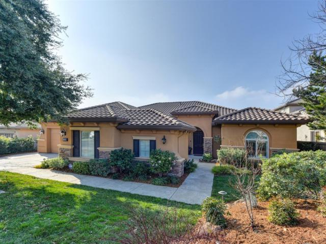1206 Terracina Drive, El Dorado Hills, CA 95762 (MLS #19007438) :: REMAX Executive