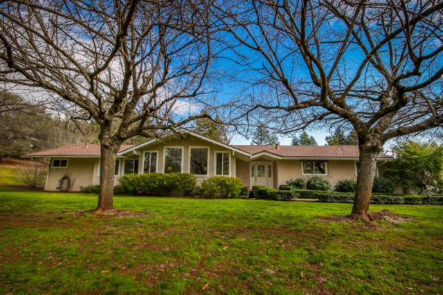 1171 Auburn Ravine Road, Auburn, CA 95603 (MLS #19007476) :: The Merlino Home Team