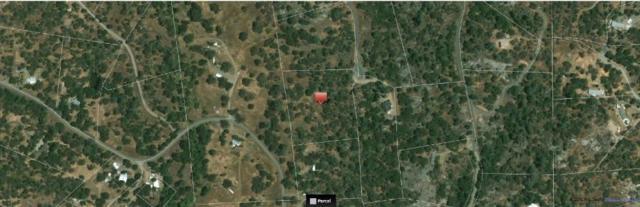 4583 Royal Oaks, Mariposa, CA 95338 (MLS #19007523) :: Keller Williams - Rachel Adams Group