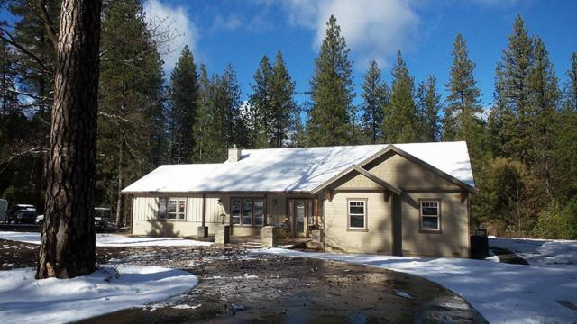 11340 Constitution Court, Nevada City, CA 95959 (MLS #19007542) :: Keller Williams - Rachel Adams Group