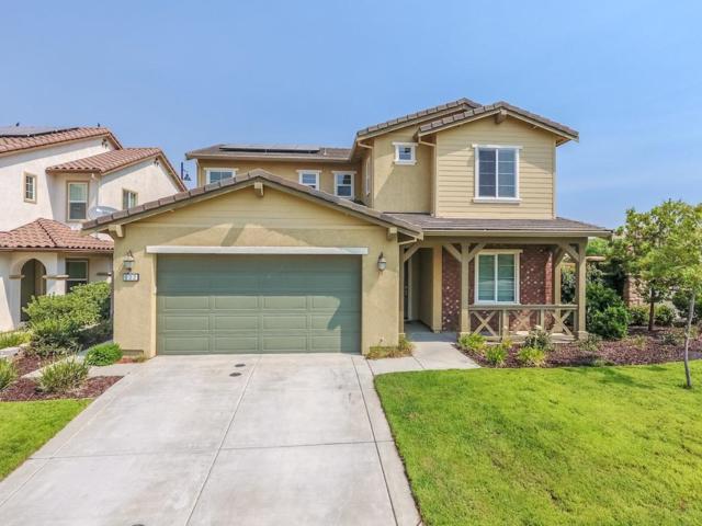 832 Calico Drive, Rocklin, CA 95765 (MLS #19008003) :: Keller Williams - Rachel Adams Group