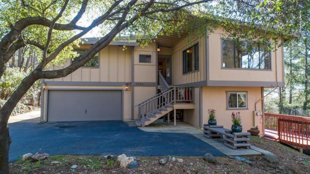 2446 Giovanni Drive, Placerville, CA 95667 (MLS #19008068) :: Dominic Brandon and Team