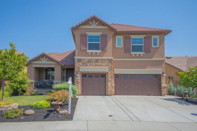 3073 Demartini Drive, Roseville, CA 95661 (MLS #19008260) :: REMAX Executive