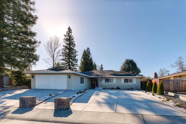 602 Falcon Way, Roseville, CA 95661 (MLS #19008353) :: REMAX Executive