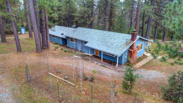 2528 Bald Mountain Road, West Point, CA 95255 (MLS #19008403) :: Dominic Brandon and Team