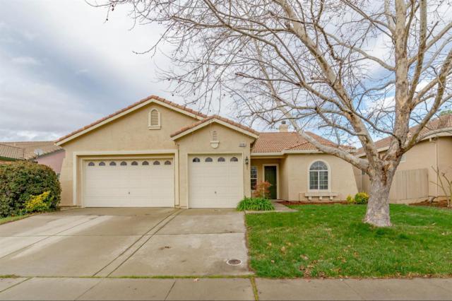 10135 Azinger Way, Sacramento, CA 95829 (MLS #19008437) :: Heidi Phong Real Estate Team