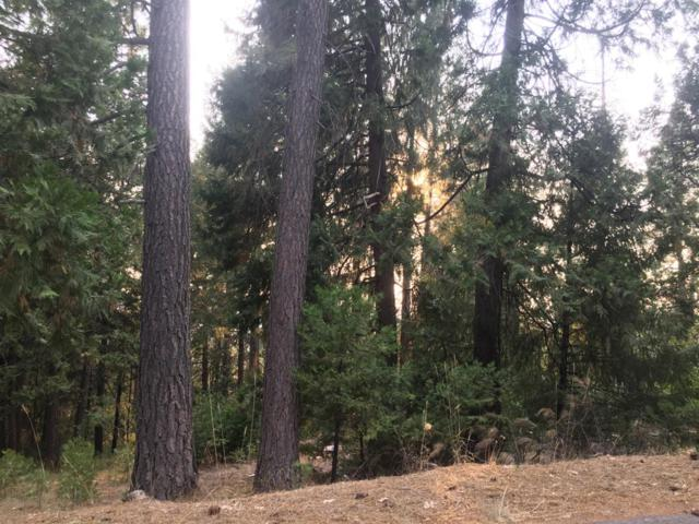 4898 Creekside Drive, Grizzly Flats, CA 95636 (MLS #19008564) :: The Del Real Group