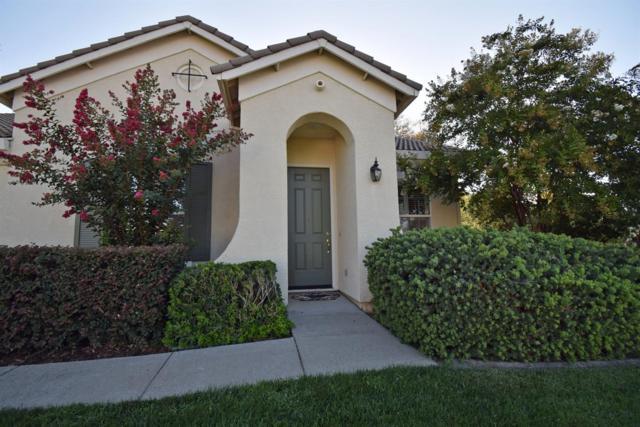 204 Seton Court, Shingle Springs, CA 95682 (MLS #19008719) :: The Merlino Home Team