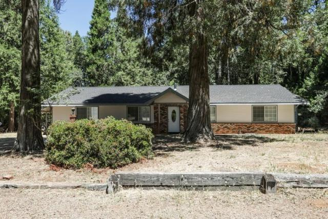 13260 Idaho Maryland Road, Nevada City, CA 95959 (MLS #19008781) :: Keller Williams - Rachel Adams Group