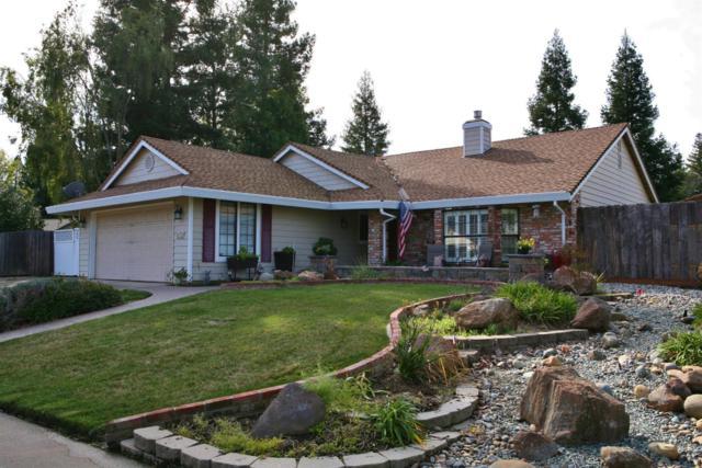 1763 Vista Creek Drive, Roseville, CA 95661 (MLS #19009081) :: Dominic Brandon and Team