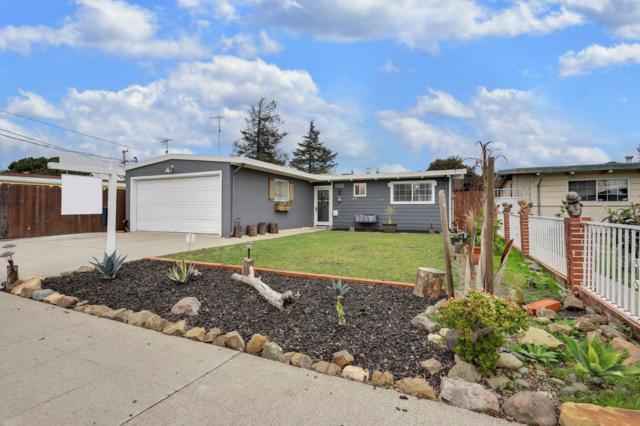 28284 Rochelle Avenue, Hayward, CA 94544 (MLS #19009256) :: The Merlino Home Team