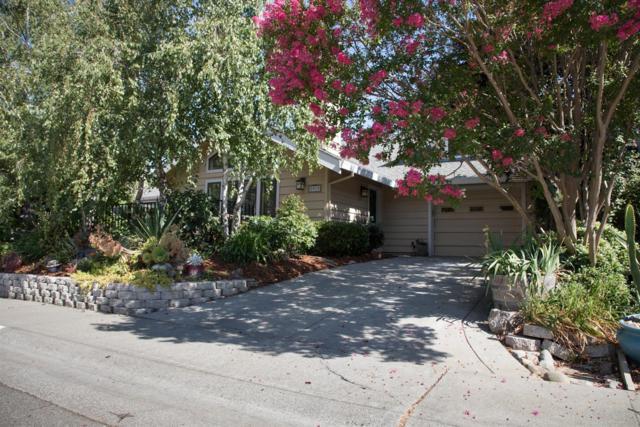 2919 Avila Bay Place, Davis, CA 95616 (MLS #19009331) :: Dominic Brandon and Team