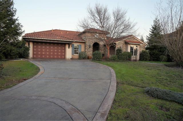 8610 French Creek Court, Roseville, CA 95747 (MLS #19009470) :: REMAX Executive