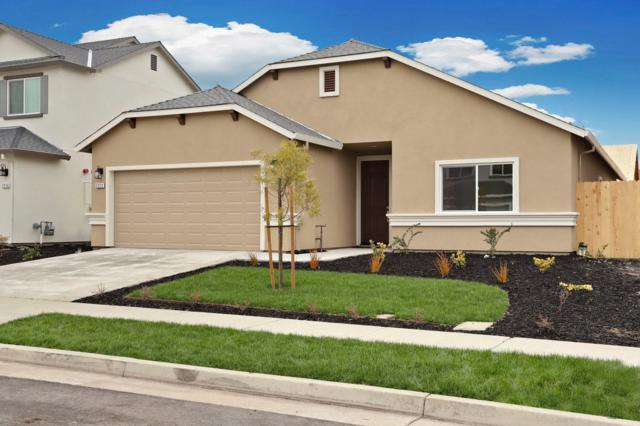2246 Tidewind Drive, Stockton, CA 95206 (MLS #19009678) :: Keller Williams - Rachel Adams Group