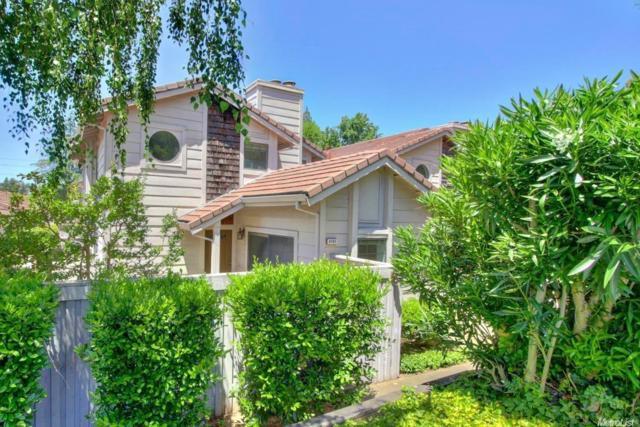 8165 Rose Vine Lane, Fair Oaks, CA 95628 (MLS #19009736) :: The Merlino Home Team