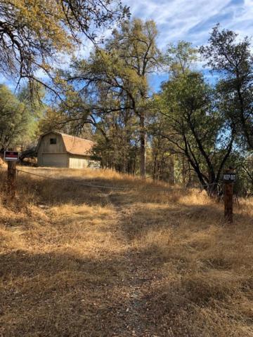 16671 Sparrow Hawk Lane, Sonora, CA 95370 (MLS #19009762) :: Dominic Brandon and Team
