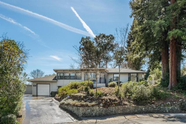4537 Plantation Drive, Fair Oaks, CA 95628 (MLS #19009766) :: Dominic Brandon and Team