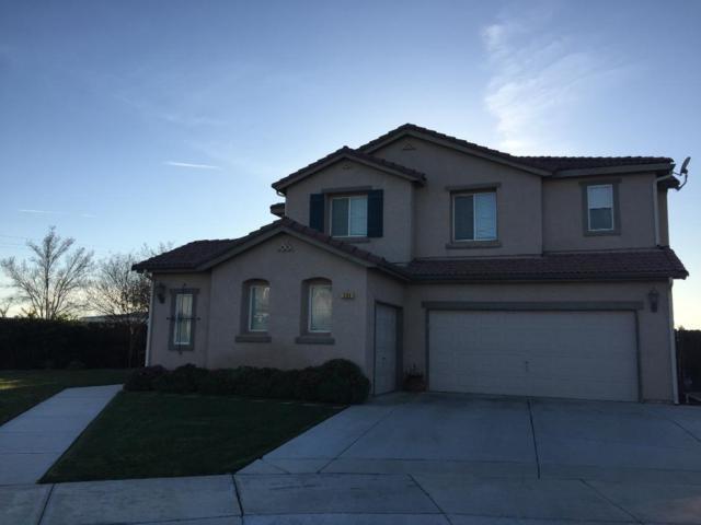 209 Honeybell Court, Los Banos, CA 93635 (MLS #19009772) :: REMAX Executive