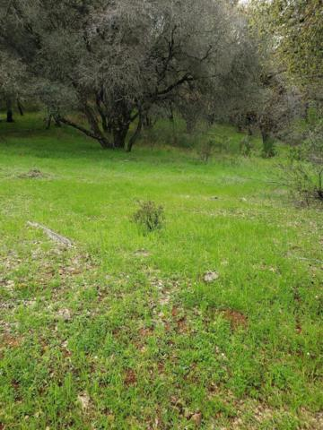0 Cascade Trail, Cool, CA 95614 (MLS #19009805) :: The Del Real Group