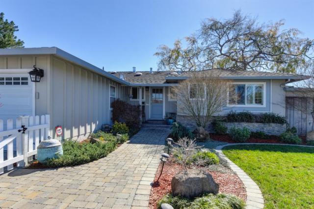 5050 Trenary Way, San Jose, CA 95118 (MLS #19009962) :: The Del Real Group