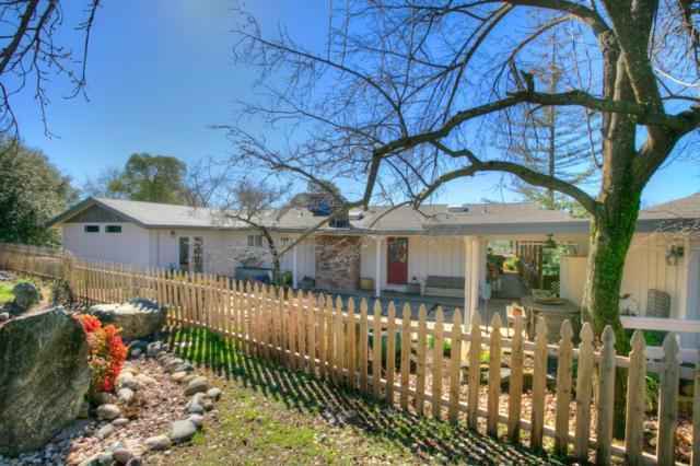 859 Holly Hills Drive, Auburn, CA 95603 (MLS #19010163) :: Keller Williams Realty - Joanie Cowan
