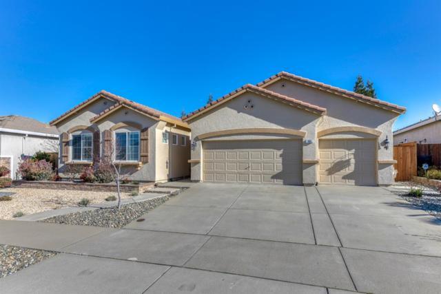 165 Lochness Ct, Roseville, CA 95678 (MLS #19010286) :: Heidi Phong Real Estate Team